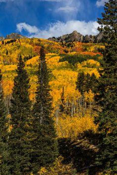 Kebler Pass, Colorado; photo by David Kingham