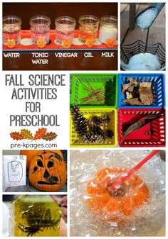 Fall Science Activities for Preschool and Kindergarten
