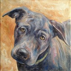 Zulu by Painted Paws Studio #rescue #labrador #pitbull #dogart #painting