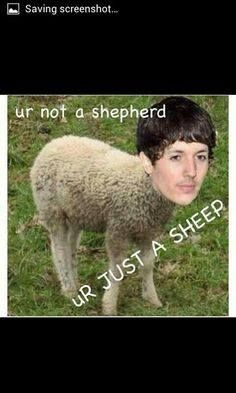 Bruh, I am the shepherd if you're the sheep