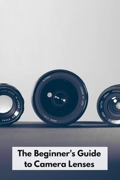 Helpful guide for picking what lenses to buy!