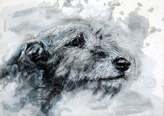 Martial Robin peintures Dog Paintings, Watercolor Paintings, Animal Drawings, Art Drawings, Irish Wolfhounds, Illustration Art, Illustrations, Lurcher, Scribble