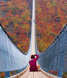 The crazy Geierlay Bridge in Germany ///