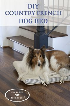 Our Molly the Collie needed a new cover for her dog bed. Of course I couldn't find anything I liked. I love those DIY dog beds that are made from a drawer, but our Molly is large and so she needed a big bed. I decided to recover the bed she had. As I removed …