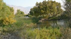 The Owens River.