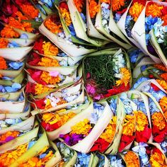 Flower offerings in Bali I've watched my friends making these little baskets, they're so clever! Yoga Teacher Training Bali, Bali Baby, Bali Yoga, Bali Honeymoon, Famous Places, Bali Travel, World Of Color, Balinese, Beautiful Islands