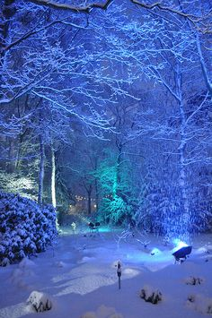 Winter Efteling. One of the oldest theme parks, Netherlands
