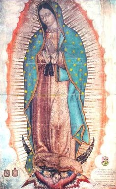 Our Lady of Guadalupe, Empress of the Americas