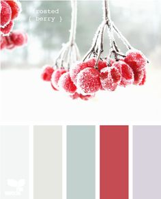 frosted berry  Color Palette - Paint Inspiration- Paint Colors- Paint Palette- Color- Design Inspiration