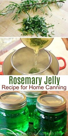 Canning 101 How to Make Rosemary Jelly Rosemary Jelly Recipes Jelly Recipes Hostess Gifts Rosemary Recipes Canning Recipes Rosemary Jelly Recipe, Rosemary Recipes, Dr Pepper Jelly Recipe, Rosemary Ideas, Jelly Recipes, Jam Recipes, Cooker Recipes, Recipies, Canning Tips