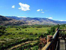 Best Things to Do in the Okanagan Valley, British Columbia - Map & Guide British Columbia, Stuff To Do, Things To Do, Valley Road, Canada Travel, Holiday Destinations, Paths, Road Trip