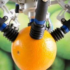 Guarda il robot che raccoglie la frutta senza danneggiarla - Wired
