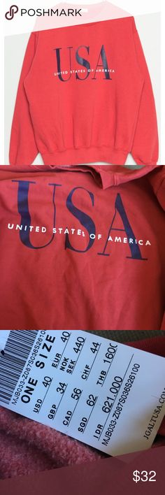 Brandy Melville USA crewneck/Hoodie/pullover Rustic red brandy Melville United States is America pullover. New with tags, no defects! Fleece lined Brandy Melville Tops