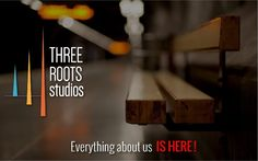Company Portfolio - 3 Roots Studios | Mobile app development by Sachindra Pandey via slideshare