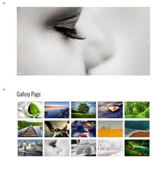 The RichWP Gallery Theme is a fully responsive and truly adaptive WordPress Gallery Theme with an app-like fly-out menu plus a modern grid styled blog design.