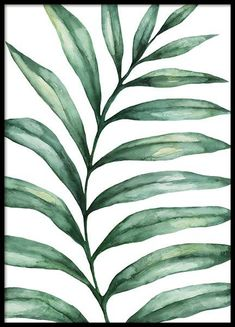 Love Leaves Poster in de groep Posters / Botanisch bij Desenio AB Gold Poster, Blue Poster, Print Poster, Modern Art Prints, Wall Art Prints, Personalised Posters, Shape Posters, Art Posters, Watercolor Paintings