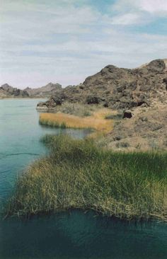 Dense green grass growing along the edge of blue water, surrounded by barren brown rock, stretching away into the distance. - Photographer/Submitter:Peter Druschke Wilderness:Havasu Wilderness