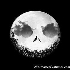 Halloween » Halloween Costumes 2013