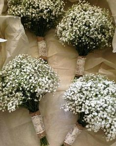 Choosing Your Wedding Flowers 4 Simple Baby's Breath Bouquet Bridesmaid Bouquets Wedding Floral Package Wedding Bridesmaid Bouquets, Bride Bouquets, Flower Bouquet Wedding, Floral Wedding, Trendy Wedding, Gypsophila Bouquet, Boquet, Winter Wedding Flowers, Marie