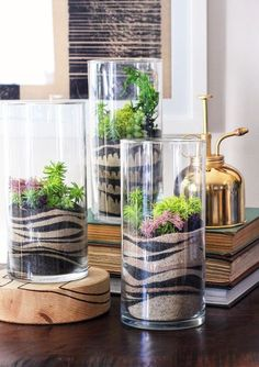 Sand Art Terrariums ~ pretty cool looking.a diy craft kit makes it happen decor diy projects HWTF x Makers Kit DIY Sand Art Terrarium - Honestly WTF Mini Terrarium, Terrarium Plants, Succulent Terrarium Diy, Terrarium Centerpiece, Terrarium Wedding, Succulent Ideas, Succulent Arrangements, Succulent Plants, Air Plants