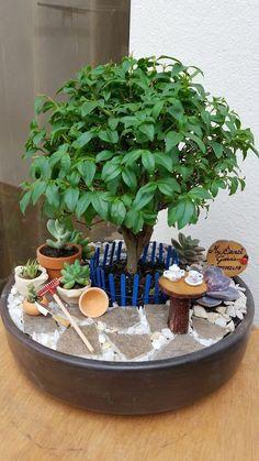 diy garden tips 30 Beautiful Indoor Fairy Garden Ideas Indoor Fairy Gardens, Mini Fairy Garden, Fairy Garden Houses, Gnome Garden, Miniature Fairy Gardens, Indoor Garden, Garden Deco, Small Gardens, Garden Crafts