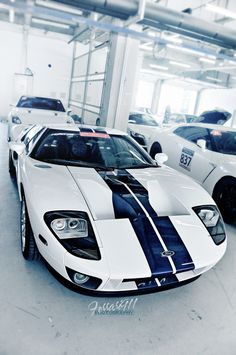 Ford GT white w/ blue stripes. My Sweetheart chased one of these down just so I could look at it in person :) what an awesome wife!