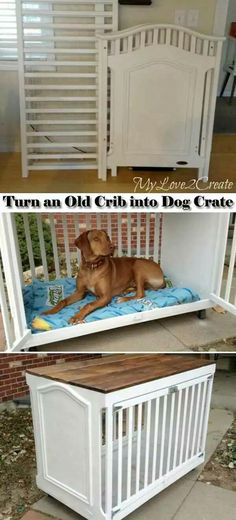 Upcycle. Crib into dog crate