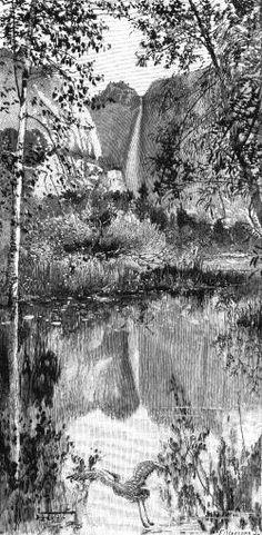 [Mirror view of Yosemite Falls.]
