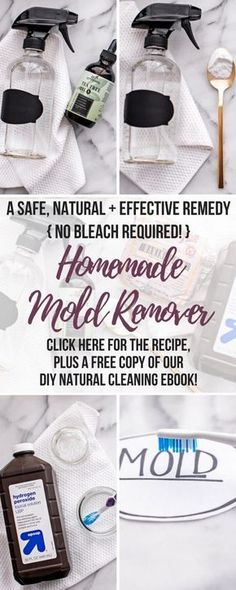 Wondering how to get rid of mold naturally? Whether you have black mold in your shower or basement, on your walls, windows, ceiling or baseboards, this DIY Mold Remover is a safe and natural black mold removal cleaner that will eliminate mold health risks Cleaning Mold, House Cleaning Tips, Deep Cleaning, Cleaning Hacks, Cleaning Recipes, Cleaning Checklist, Get Rid Of Mold, How To Get Rid, Diy Mold Remover