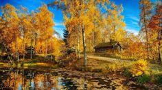Las Mejores Fotografías del Mundo: septiembre 2014