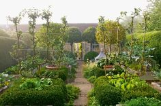 The kitchen garden of Bunny Guinness with double cordon apple trees. Photo by Robin Baker.