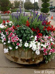 Designer Planter Ideas Red White And Blue Container Low maintenance Gardening Recipe !Red White And Blue Container Low maintenance Gardening Recipe ! Container Flowers, Flower Planters, Container Plants, Garden Planters, Container Gardening, Succulent Containers, Galvanized Planters, Large Flower Pots, Small Flowers