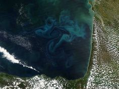 Over the Bay of Biscay, a NASA satellite captures the prettiest photo of phytoplankton you will probably ever see http://pops.ci/12t4pcT