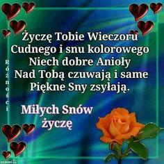 Good Night All, Humor, Funny, Mango, Polish, Dreams, Facebook, Cards, Frases