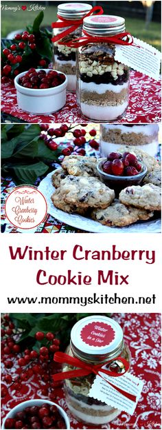 Mommy's Kitchen - Recipes from my Texas Kitchen! Winter Cookie Mix in a Jar. Cranberries, white chocolate chips, oatmeal and pecans make up these festive Winter Cookie Mix in a Jar. ♥  #cookies #giftsinajar #cranberries #whitechocolate #oatmeal #holidaybaking #mommysktichen #christmas