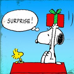 "Snoopy Holding Present and Telling Woodstock ""Surprise! Peanuts Cartoon, Peanuts Snoopy, Snoopy Cartoon, Peanuts Comics, Snoopy Love, Snoopy And Woodstock, Snoopy Pictures, Snoopy Images, Peanuts Christmas"