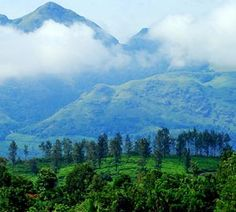Kerala is one of the beautiful places and it contains lots of attractive tourist destinations. All these destinations can enjoy all kind of peoples. Kerala which contain four different seasons, like winter, summer, south-west monsoon and north-east monsoon. These four seasons posses an important face in the growth of Kerala tourism. All favorable Kerala tour packages are based on these seasons.