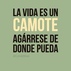 """""""La vida es un #Camote agárrese de donde pueda"""". #Citas #Frases @Candidman"""