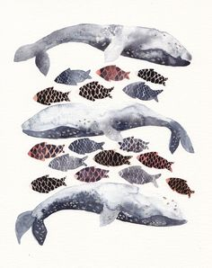 Three Whales and Fish - Archival Print. $20.00, via Etsy.
