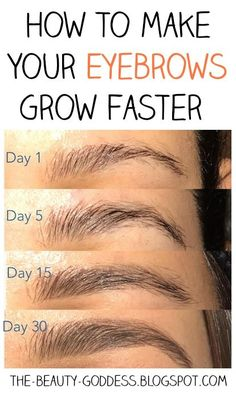 Makeup Hacks Online – Hair and beauty tips, tricks and tutorials How To Thicken Eyebrows, Make Eyebrows Grow, Fix Eyebrows, Growing Out Eyebrows, Sparse Eyebrows, Dark Eyebrows, Tweezing Eyebrows, Natural Eyebrows, Threading Eyebrows