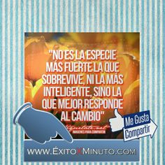 ÉxitoXMinuto: Invierte en ti, en tu Éxito X Minuto  #instalike #instamood #instaphoto #instagramers #postoftheday #photooftheday #amor #goodlife#like #love #cute #vida #venezuelan #buenosdias #bestoftheday #miami #motivacion #me #SoloQuotes#negociosdemx #negocioseguro #negociosdamoda#emprender#exito#mexico#amor