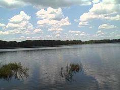 Tour of Dixie Lake at Lake Louisa State Park.AVI