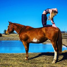 Apparently Doing Yoga on a Horse Is a Thing