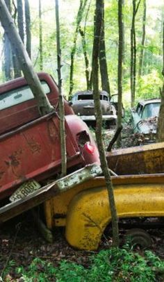 34 acres of abandoned classic cars await at Old Car City
