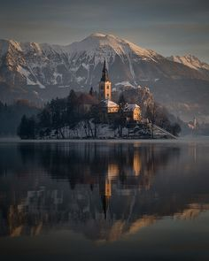 Winter sunrise at Lake Bled, Slovenia, Assumption of Mary Pilgrimage Church. Skiing and chilling in Slovenia. Places Around The World, The Places Youll Go, Places To See, Wonderful Places, Beautiful Places, Amazing Things, Amazing Places, Les Balkans, Assumption Of Mary