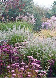 Prairie Garden, Meadow Garden, Garden Cottage, Dream Garden, Diy Jardin, Garden Architecture, Architecture Design, Winter Garden, Shade Garden