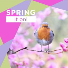 WITH SPRING'S ARRIVAL, all we have to say is spring it on!