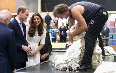 The pair got up-close-and-personal with a ram called Fred. Catherine and her husband also watched a shearing demonstration and could be seen giggling away as a layer of wool was removed. Kate is believed to have told her spouse that he could use the wool to coverup a bald patch on his head
