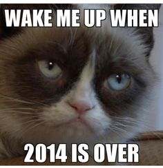 Wake me up when 2014 is over from @americanadirondackchairs.com