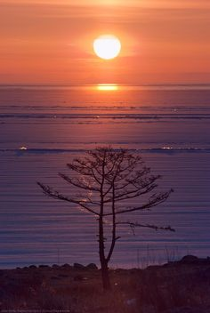 Morning sun over Baykal lake, Siberia, Russia (the deepest lake in the world) by Kozhonov Danil Beautiful Sunset, Beautiful World, Beautiful Places, Amazing Places, What A Wonderful World, Amazing Nature, Amazing Sunsets, Morning Sun, Beautiful Landscapes